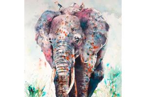 Image of Ward Jene Stroud's elephant painted with Brusho.