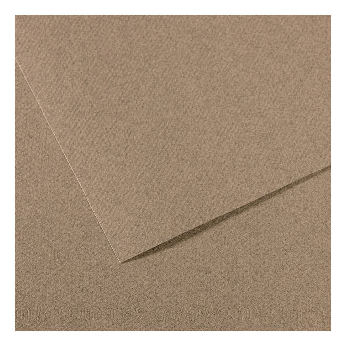 x 25 in. PACK OF 10 Canson Mi-Teintes Tinted Paper steel gray 19 in