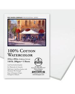 Aquabee Watercolor Paper, Pkg of 5 Sheets